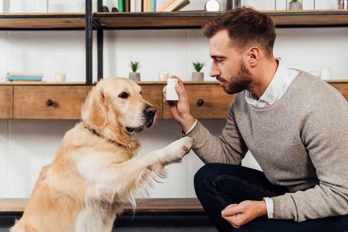 vitaminen voor de hond